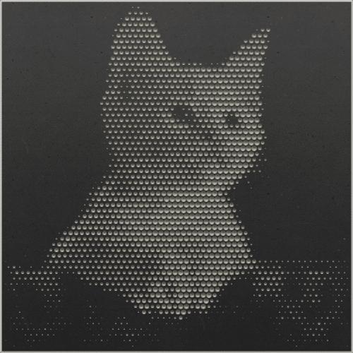 Katzenbaby grau/schwarz